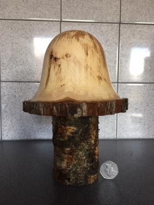 Barry B Mushroom